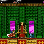 Shovel Knight-(10)